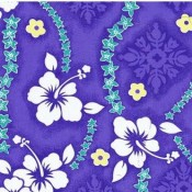 Violet Hibiscus